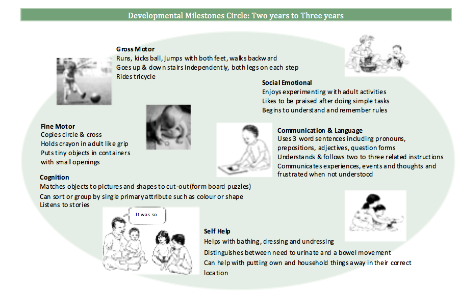 Developmental Milestones Circle: Two years to Three years