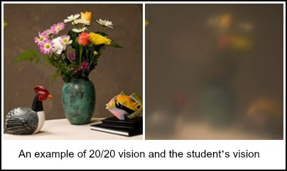 contrasting images of what student sees and what normal vision is