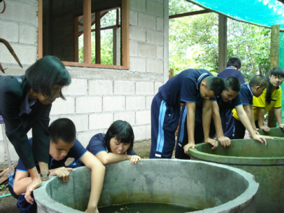 The students enjoy observing the catfish in the water tanks.