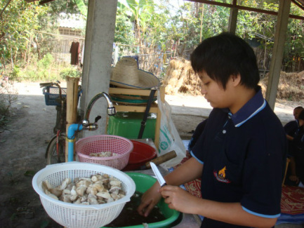 After the mushrooms have been harvested, they are washed and sliced for cooking.