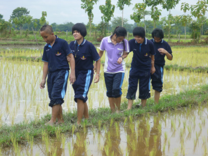 Photo of transition-age youth walking through rice field