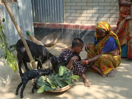 Photo of Ismot and her grandmother feeding the goat